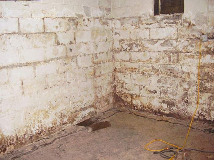 waterproofing basement walls newhairstylesformen2014