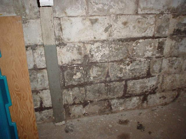 efflorescence showing where waterproof paint has flaked off this wall