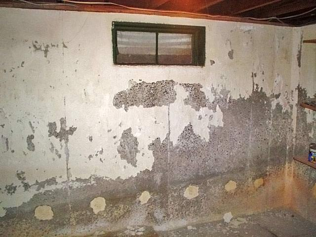 Peeling waterproof paint in basement for Painting concrete basement walls